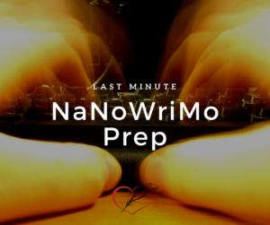 Clara Ryanne Heart: The Invisible Author - Last Minute NaNoWriMo Prep