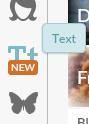 PicMonkey Text